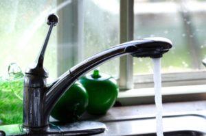 松茸の洗い方