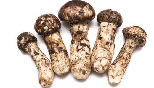 松茸の賞味期限や冷凍保存方法