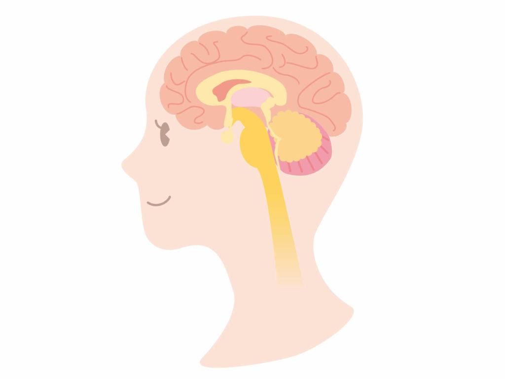 【自閉症グレーゾーン】これってチック症?原因や対処法は?小5息子の不自然な首と目の動き